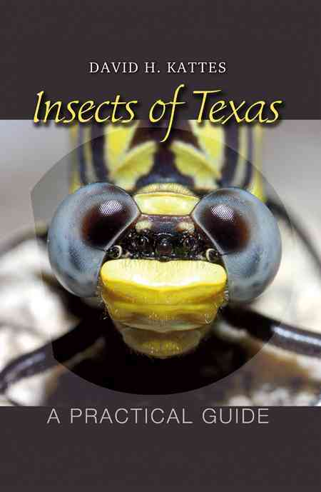 Insects of Texas By Kattes, David H.